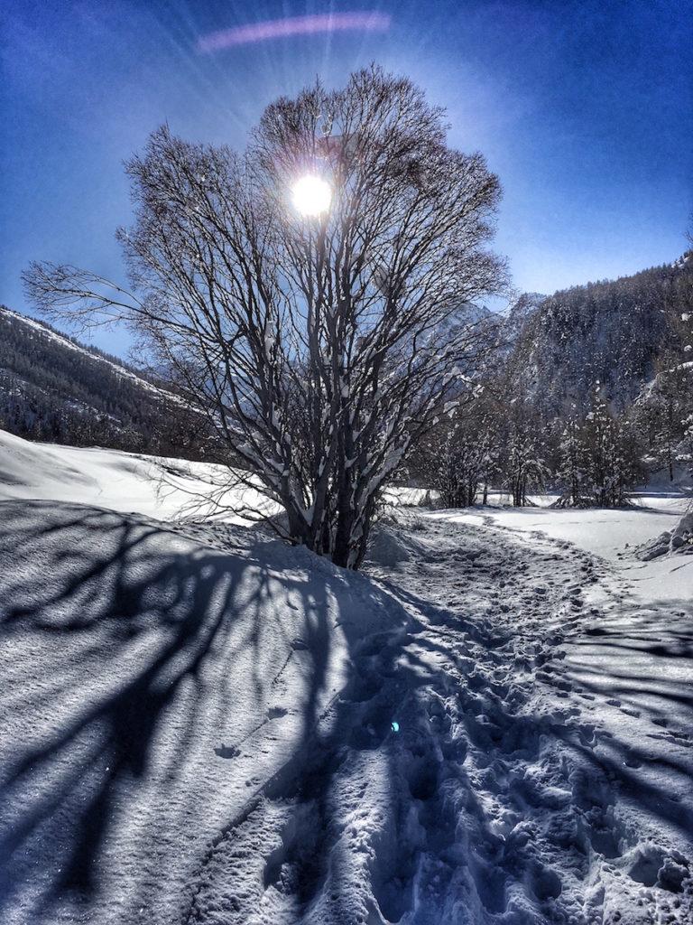 En hiver à l'Echalp