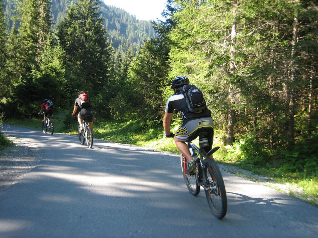 Vélo de route Alpes